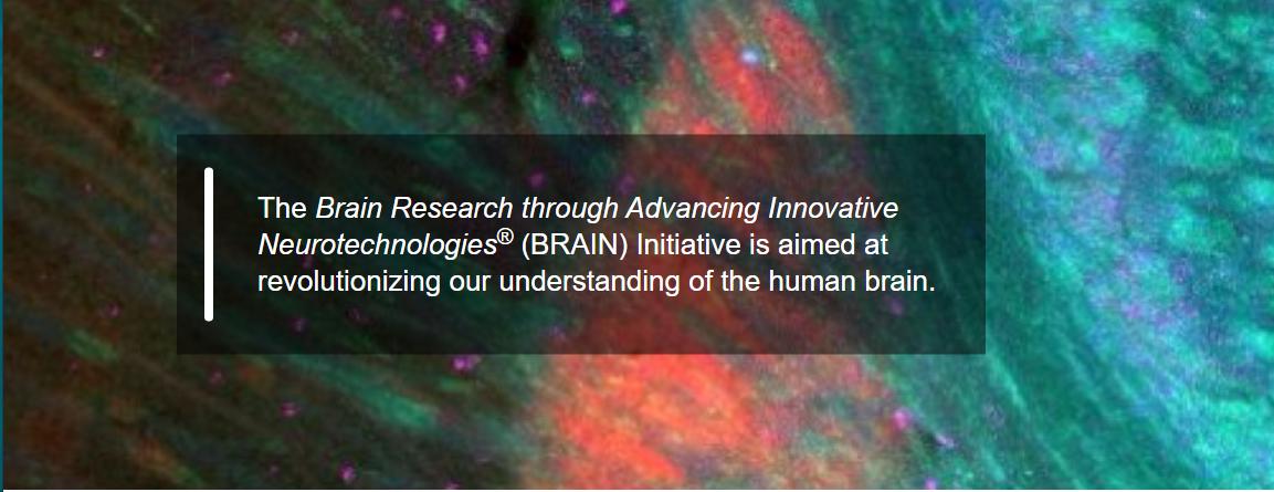 Brain initiative
